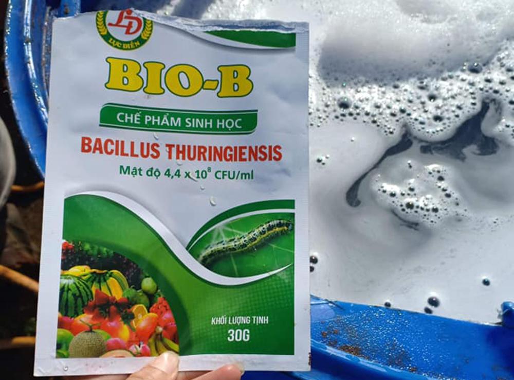 chế phẩm sinh học bacillus thuri