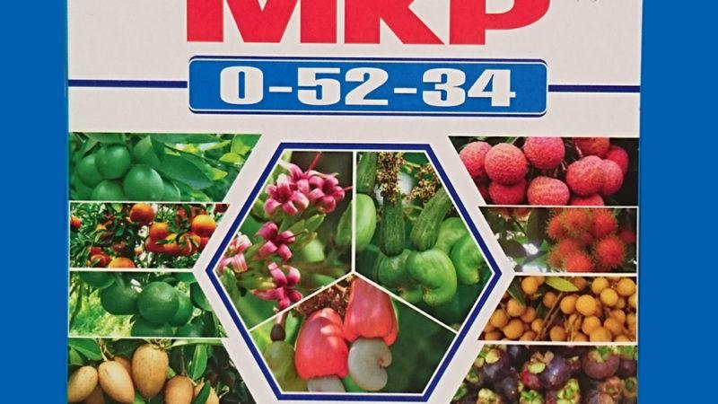 Hỏi – Đáp: Phân bón lá MKP có gây cháy hoa không ?