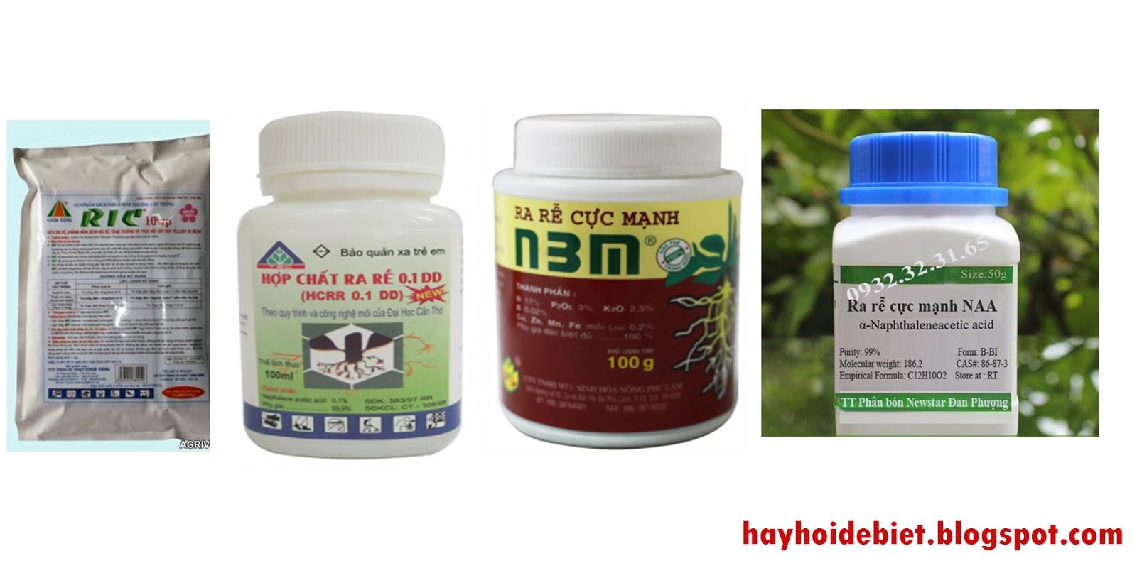 Các loại thuốc kích thích ra rễ