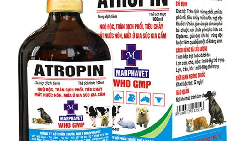 ATROPIN: Dung dịch tiêm trị ngộ độc, tràn dịch phổi