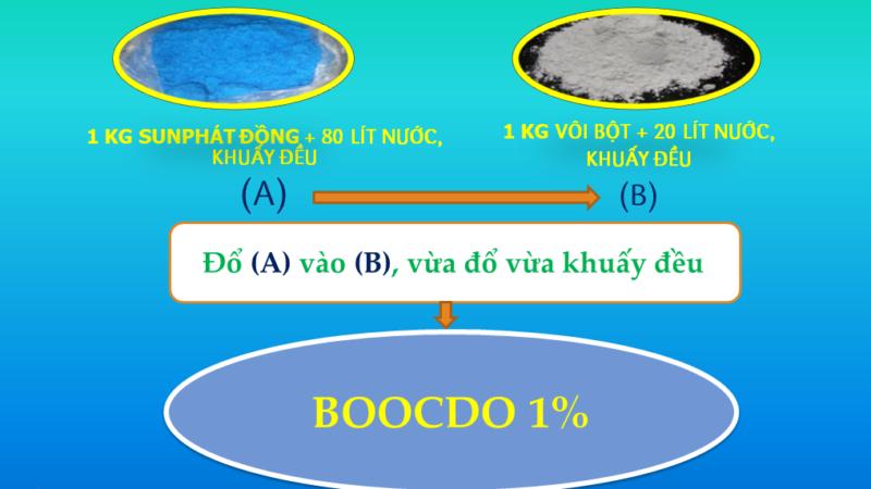 Cách pha chế dung dịch Boocdo 1%, 5%