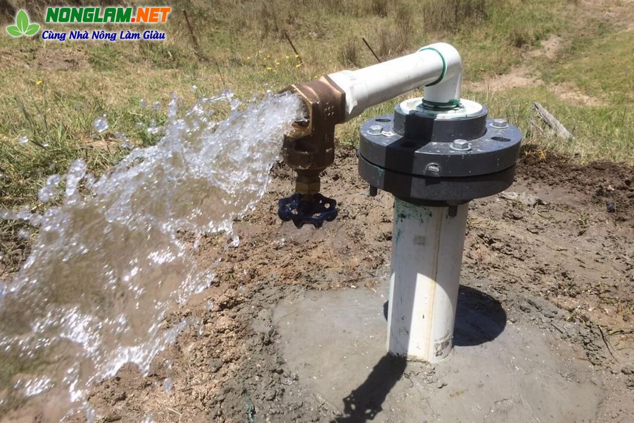 Xử lý nước máy, nước giếng khoan nuôi tôm cá ốc