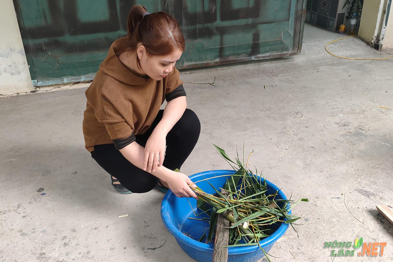 Cô gái nuôi dúi và thức ăn cho dúi
